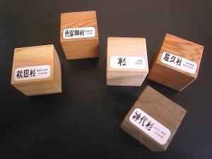 20101102 日本の隠された財産・スギ⑤