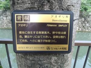 20110609 殿、葵の御紋とコラボでござる!②